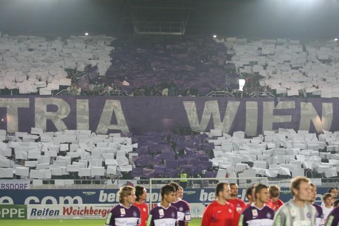 Choreo der Fans von Austria Wien
