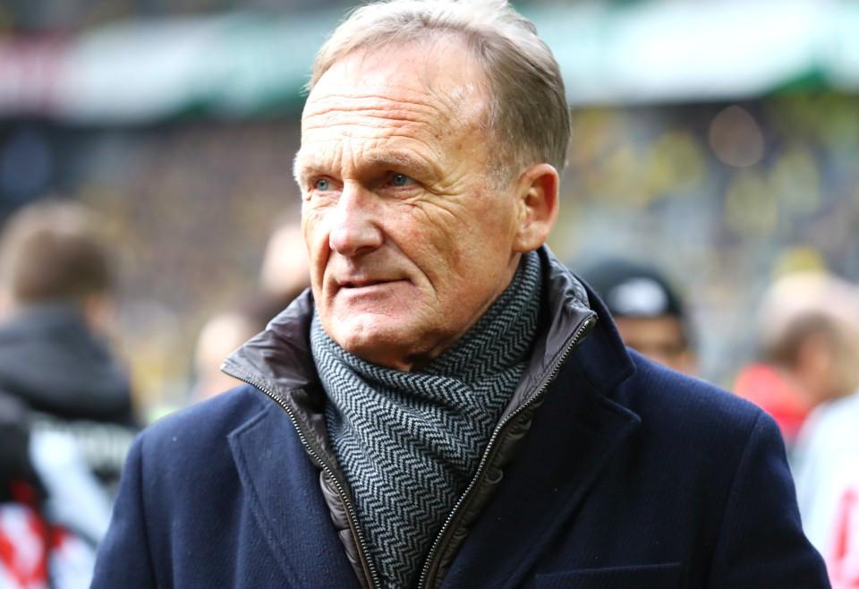 201819, 1. Bundesliga, Fussball, Fußball, GER, 1.BL, 1. BL, Herren, Saison, Sport, football, Portrait - BVB - TSG Hoffenheim
