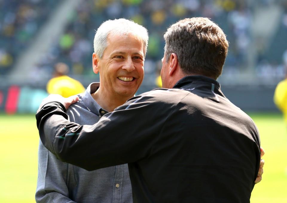 201819, 1. Bundesliga, Fussball, Fußball, GER, 1.BL, 1. BL, Herren, Saison, Sport, football, Halbfigur, halbe, Figur, Halbkörper, begrüßen, besprechen, austauschen, unterhalten, lächeln, lachen, scherzen, Emotion, grinsen - Borussia Mönchengladbach - BVB
