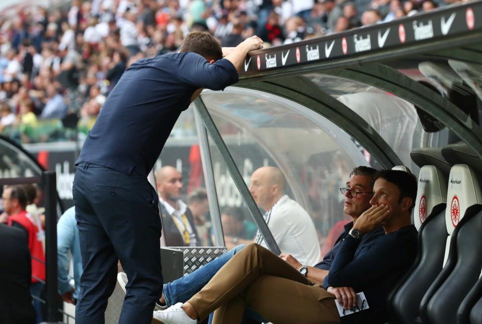 201920, 1. Bundesliga, Fussball, Fußball, GER, 1.BL, 1. BL, Herren, Saison, Sport, football, Halbfigur, halbe, Figur, Halbkörper - Eintracht Frankfurt - BVB